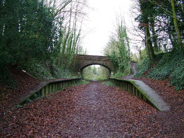 Charlton Marshall Halt