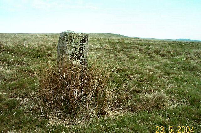 Boundary Stone - Dartmoor
