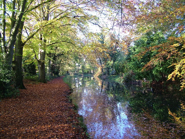 Basingstoke Canal, Sheerwater, Woking