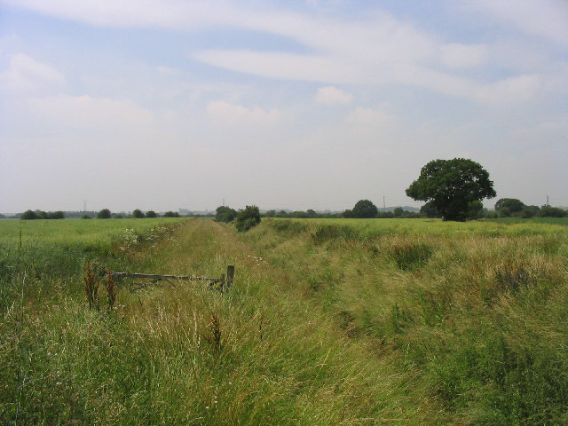 Drainage Ditch off Fen Lane, Bulphan, Essex