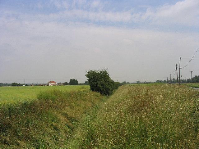 Bulphan Fen, Bulphan, Essex