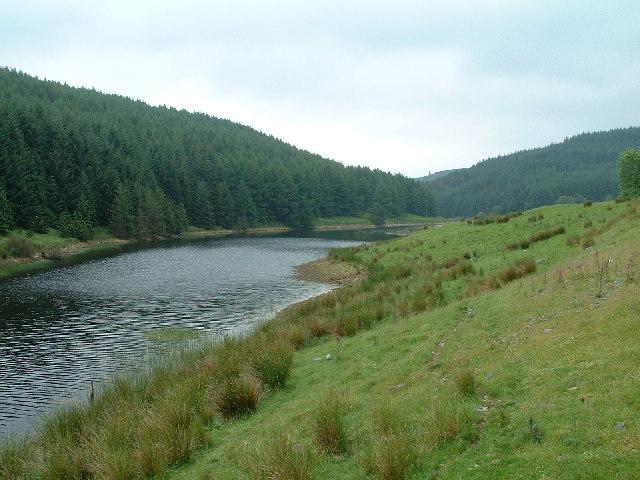 Headwaters of Lynn Brianne