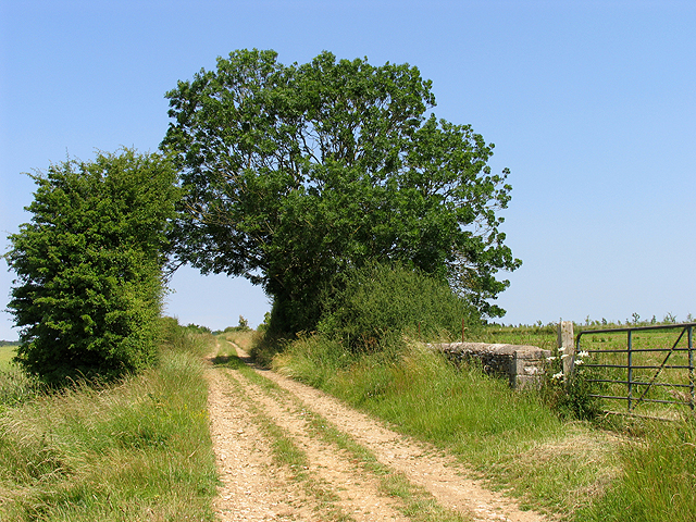 Country Road: Ampney St Mary CP