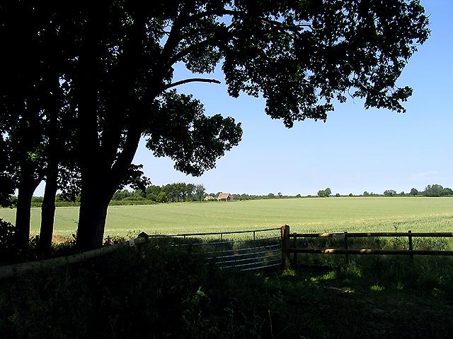 Lower Field Barn