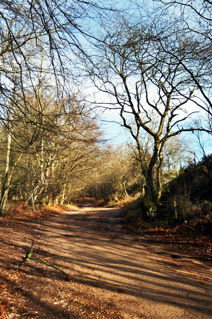The Old Road from Triscombe up to Triscombe Stone