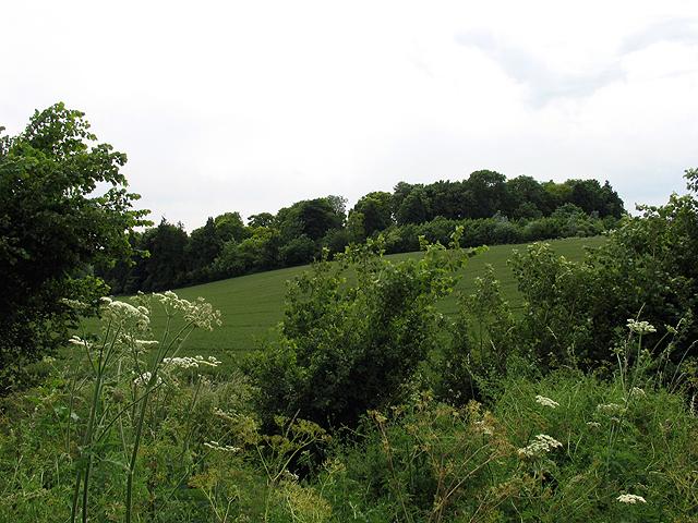 Roadside near Coln St Aldwyns