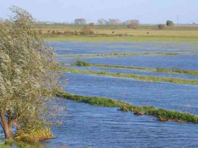 Ouse Washes, Welches Dam