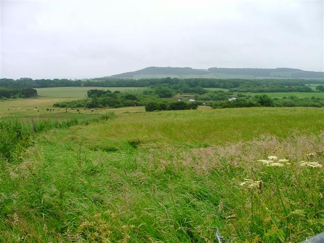 Farmland and Ponds, Dunsdale