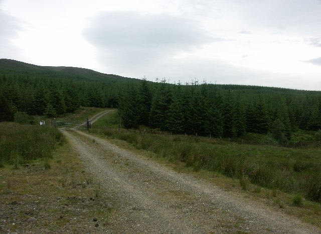 Strathlachan Forest