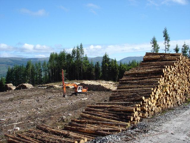 Forestry operations Leanachan Forest Spean Bridge