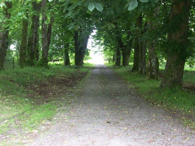 Entrance driveway into Tighnabruaich Cemetery