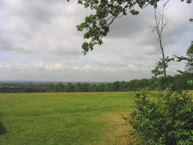 Thorndon Country Park (South), Brentwood, Essex
