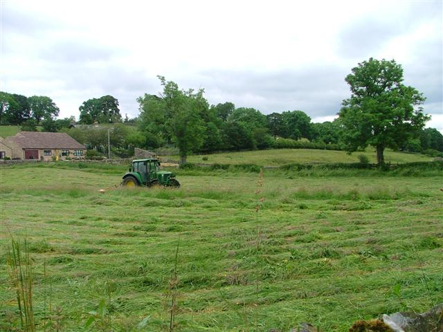Hay Cutting, Middleton in Teesdale