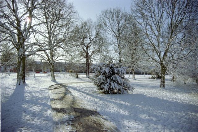 Pitshanger Park, Ealing