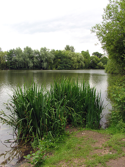 Lake near Malthouse Copse and Ufton Nervet