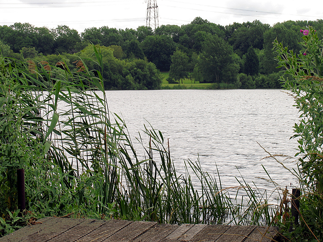 Horsehill Lake near Burghfield