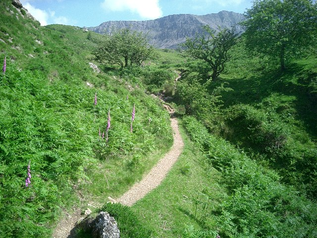 Cadair Idris, looking south through the Hawthorns