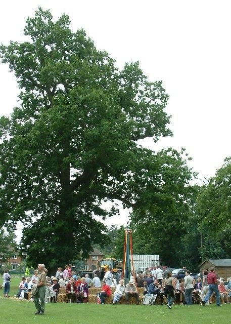 Hardingham Fete 29/6/05 at High Common