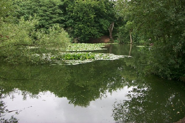 Millers Pond, Sholing Common