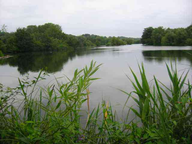 Springwell Lake  Maple Cross