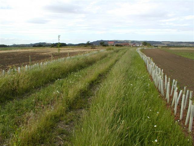 Public Footpath to Eastfield Farm