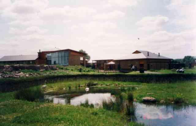 Barnes Wetlands.