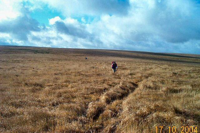 Naker's Hill - Dartmoor