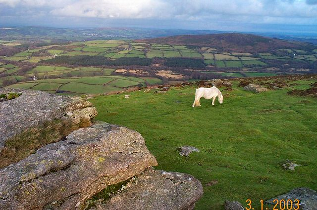 King Tor - Dartmoor