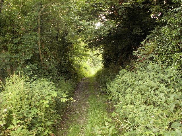 Footpath to Wallog