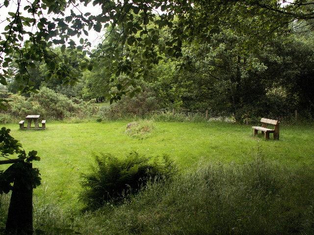 Picnic area near Gogerddan