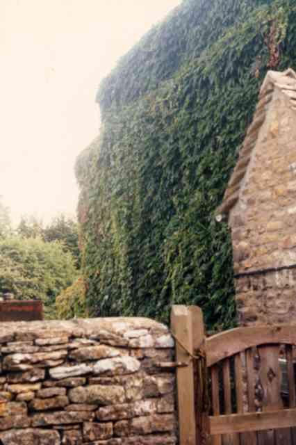 Charley Barnett's house