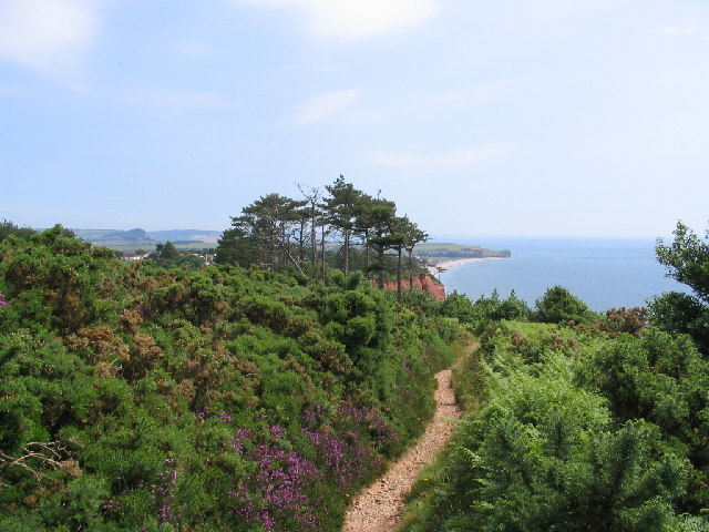 The Coastal path Budleigh Salterton