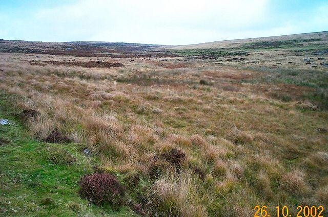 Evil Combe - Dartmoor