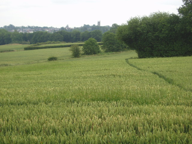 Across towards East Grinstead