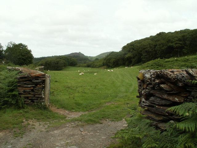 Fields near Bryndyfi mine