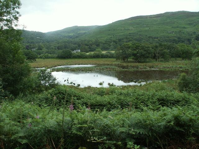 Lake, Ynys Hir