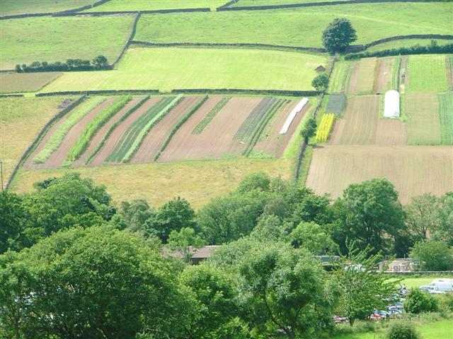 Garden Crops, Botton Village Community