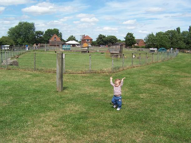 Broomey Croft Children's Farm