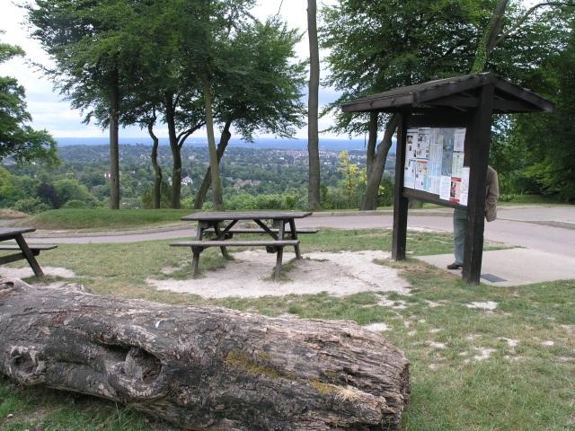 Gatton Park Viewing Area