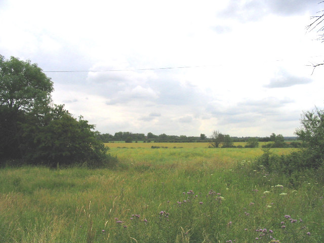 Navestock Common, Navestock, Essex