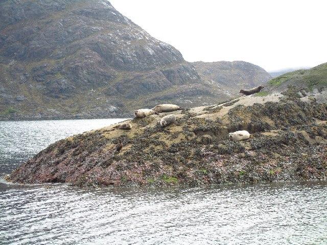 Islet in Loch na Cuilce, Skye
