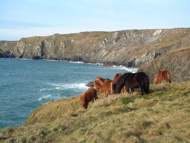 Between Lizard Point and Kynance Cove