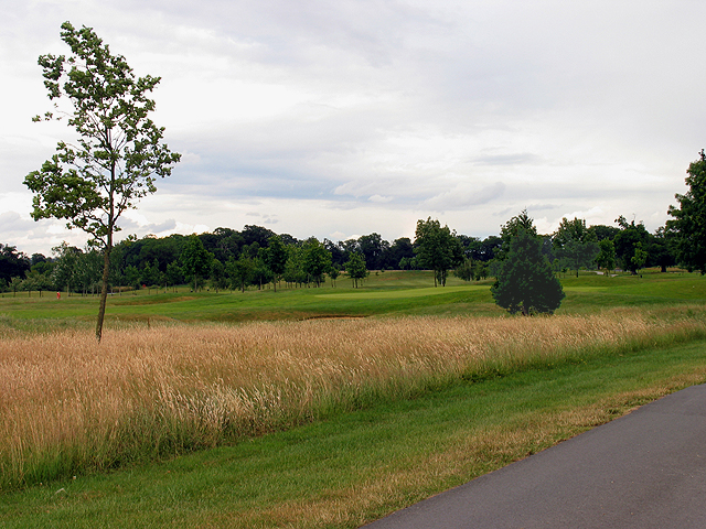 Wokefield Golf Course