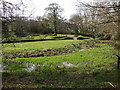 SX2297 : The ruins of Penhallam Moated Manor House by Ruth Swetnam