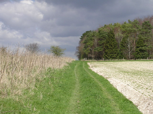 The Ackling Dyke