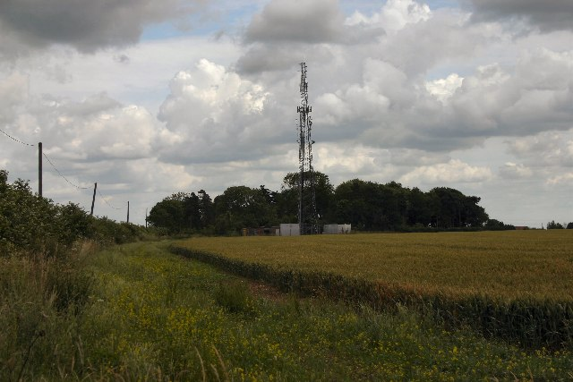 Lonely mast, Great Livermere