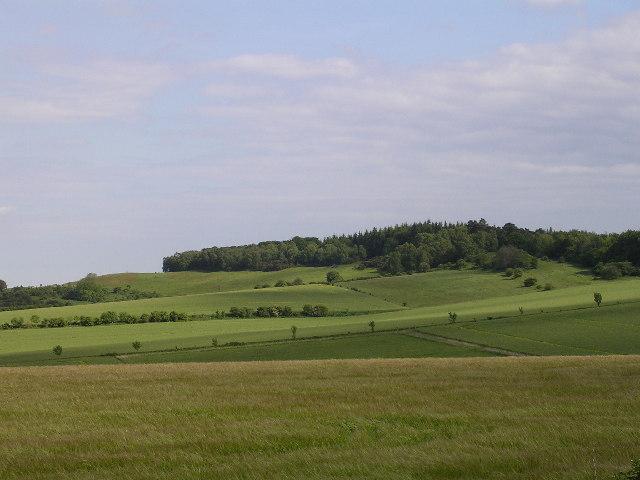 Damerham Knoll
