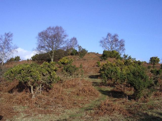 Stagbury Hill