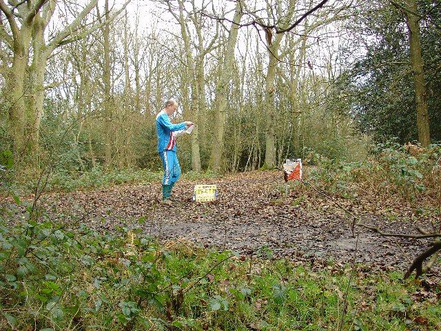 Holmwood Common, near Holmwood Corner, South Holmwood, Surrey - Mixed Broadleaf Woodland With Extensive Undergrowth