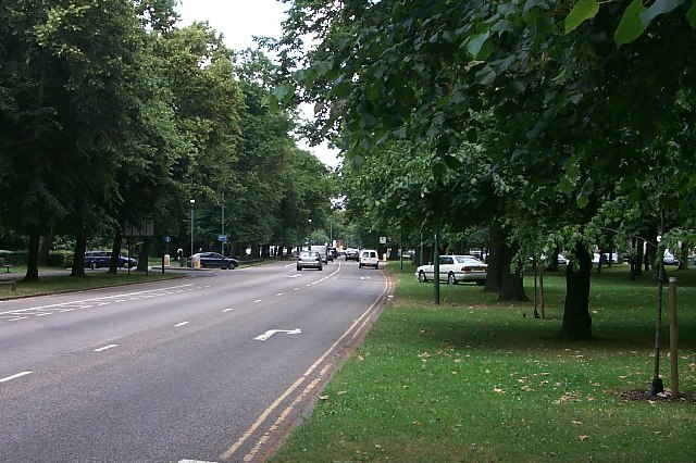The Avenue